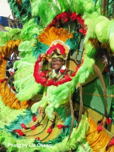Splendor of the Amazon theme at the West Indian American Day Carnival on 9/5/09 in Brooklyn, NY. (c) Lia Chang