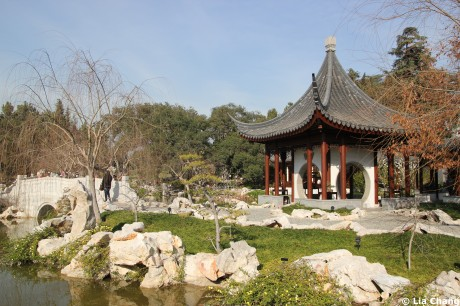 The Garden of Flowing Fragrance, the Huntington's Chinese garden and one of the focal points of the festival, was  inspired by the traditional scholar's gardens of Suzhou, China. Photo by Lia Chang