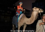 Francis Jue on his camel Sarah. Photo by Lia Chang