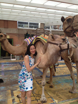 Lia Chang with the camels of Disney's Aladdin at The Muny in St. Louis. Photo by Larry D. Pry