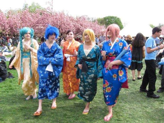 Sakura Matsuri at the Brooklyn Botanic Garden. Photo by Lia Chang