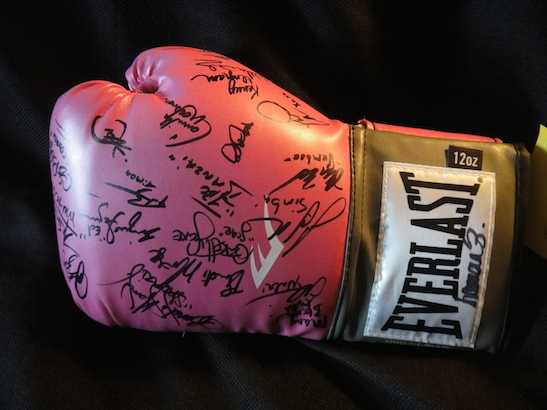 Glove signed by the cast of The Lion King.