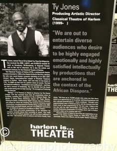 The Classical Theater of Harlem Ty Jones, Producing Director. Photo by Lia Chang