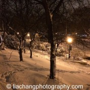 Snow in New York on January 26, 2015. Photo by Lia Chang