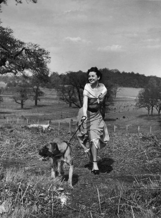 Unpublished photograph of Audrey Hepburn in Richmond Park by Bert Hardy, 30 April 1950. Image credit: Bert Hardy/Getty Images.
