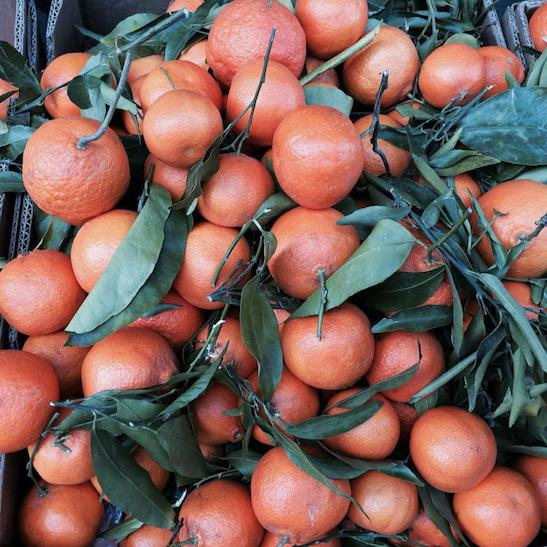 Clementines are symbols of abundance and good fortune in the traditional Chinese culture. Photo by Lia Chang